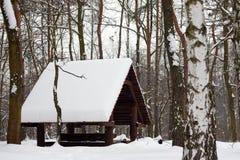 Пуща зимы и деревянный дом стоковая фотография rf