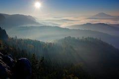 пуща излучает солнце Утро с солнцем Холодное туманное туманное утро в долине падения богемского парка Швейцарии Холмы с туманом,  Стоковое Изображение RF