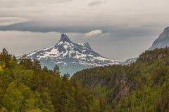 Пуща и горы Стоковые Изображения RF