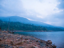 Пуща и озеро Стоковые Изображения RF