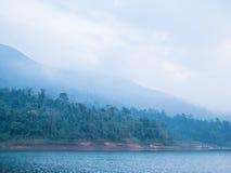 Пуща и озеро Стоковое фото RF