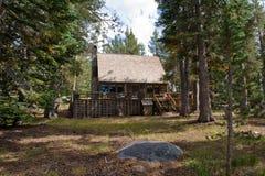 пуща кабины деревянная Стоковое Изображение RF