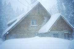 пуща кабины снежная Стоковые Изображения
