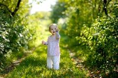 пуща младенца немногая Стоковое Изображение
