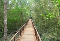 пуща моста деревянная Стоковая Фотография