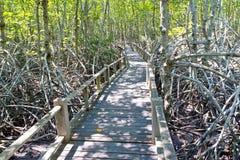 пуща моста деревянная Стоковые Изображения