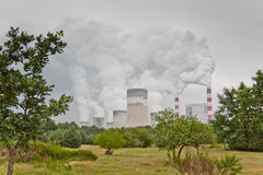пуща над дымом Стоковая Фотография RF