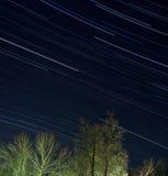 пуща над зимой звезд Стоковое Изображение RF