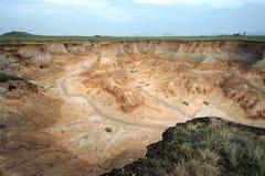 Пуща почвы Стоковое Изображение