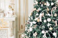 пуща рождества knurled зима снежных тропок утра широкая Классические квартиры с белым камином Стоковые Изображения