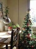 пуща рождества knurled зима снежных тропок утра широкая Стоковая Фотография