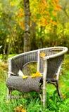 пуща стула предпосылки осени одиночная Стоковое Изображение RF