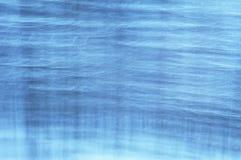 пуща шла снег Стоковое Фото