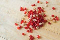 пуща ягод одичалая Стоковое Изображение