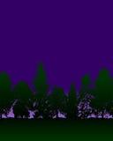 пуща Стоковое Фото