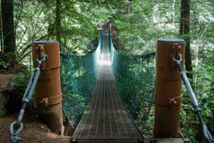 пуща footbridge Стоковые Изображения