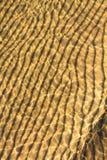Пульсации волны пляжа Стоковые Фото