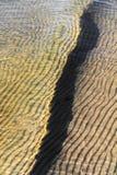 Пульсации волны пляжа Стоковое фото RF