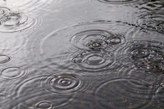 Пульсации воды Стоковая Фотография RF