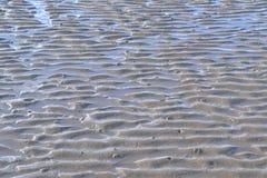 Пульсации в песке Стоковые Фотографии RF