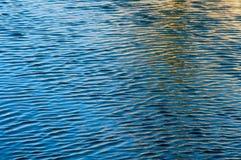Пульсации на поверхности воды стоковые фотографии rf