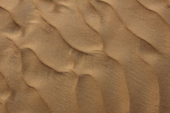 Пульсация песчанных дюн в пустыне Стоковое Фото