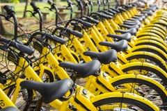 ПХУКЕТ, ТАИЛАНД - 13-ОЕ ЯНВАРЯ 2018: Желтый цвет bicycles parkin Стоковое Изображение RF