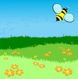 пчела летая зеленая лужайка сверх Стоковое Изображение