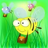 Пчелы с вектором меда Стоковое Фото