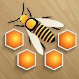 Пчела и сот на дереве Стоковые Изображения