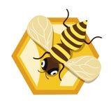 Пчела меда и одиночный мед расчесывают дизайн блока плоский Стоковые Фото