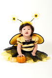 Пчела младенца готовая на хеллоуин стоковая фотография rf