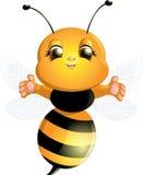 Пчела на белой предпосылке Стоковые Изображения