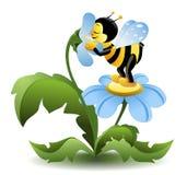 Пчела на голубом цветке Стоковые Изображения RF