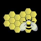 Пчела на соте Стоковые Изображения RF