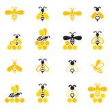 Пчела сидя на соте