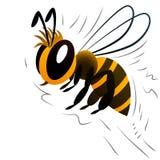 Пчела шаржа на белой предпосылке Стоковые Фотографии RF