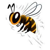 Пчела шаржа на белой предпосылке Стоковое фото RF