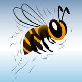 Пчела шаржа на белой предпосылке Стоковая Фотография