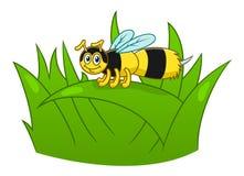 Пчела шаржа на траве Стоковые Фото