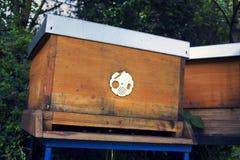 Пчелы летая в деревянную крапивницу на солнечный день Стоковые Фото