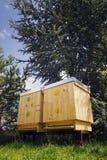 Пчелы летая в деревянную крапивницу на солнечный день Стоковые Изображения RF