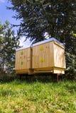 Пчелы летая в деревянную крапивницу на солнечный день Стоковое Изображение