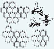 Пчелы на клетках меда иллюстрация штока