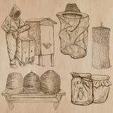 Пчелы, пчеловодство и мед - вручите вычерченный пакет 10 вектора Стоковое Изображение RF