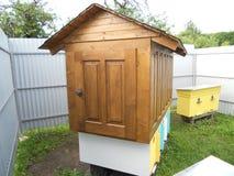 пчелы самонаводят стоковые фото
