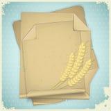 пшеница бумаги grunge уха Стоковая Фотография RF