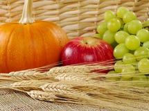 пшеница времени тыквы хлебоуборки виноградин яблока Стоковое Изображение