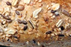 пшеница вся Стоковое Изображение RF
