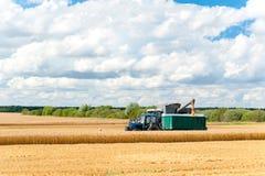 Пшеница вырезывания зернокомбайна на поле вал времени земной хлебоуборки сада яблока возмужалый Стоковое Изображение